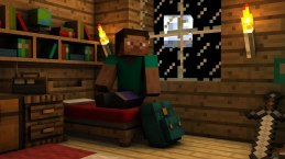 minecraft-steve-inside-night